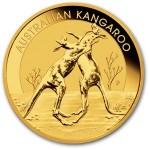 australian-gold-kangaroo-reverse